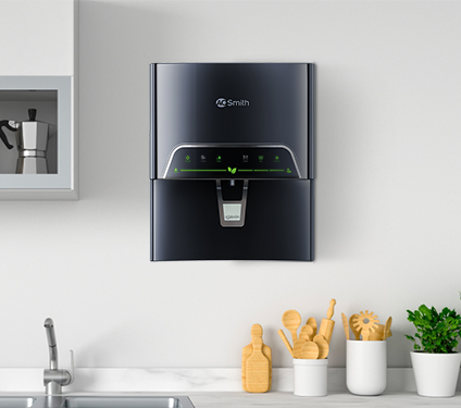 A. O. Smith Proplanet Water Purifier in Kitchen